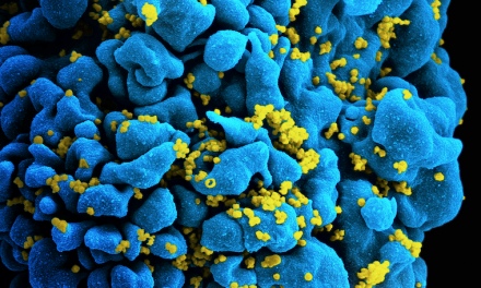 Health: End to AIDS in Sight? Landmark Study Says Yes