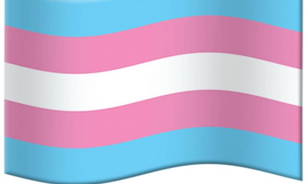 Celebrating Transgender Day of Visibility During COVID-19 Crisis
